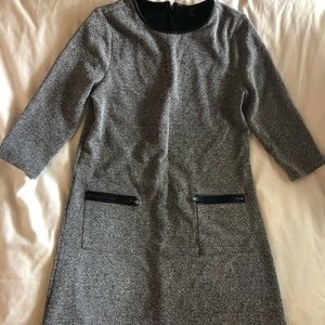 Ann Taylor Petite Dress
